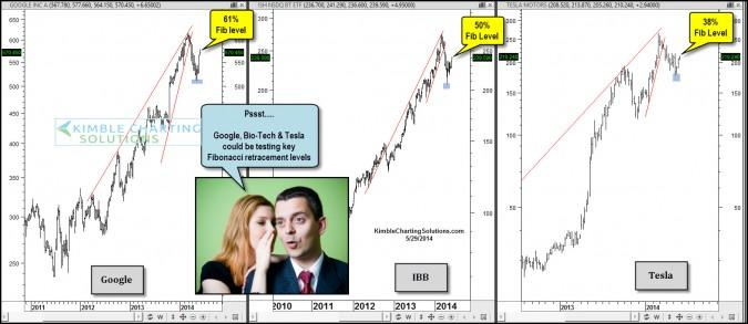 Google, Tesla & Bio-Tech peaking at these Fibonacci levels?
