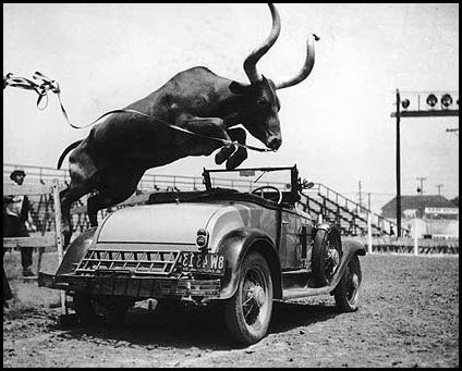 bulljumpingcarfeb24