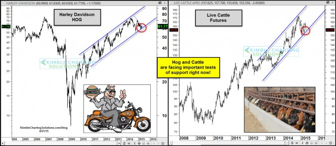 Hog and Cattle at critical price points, impact S&P 500 again?