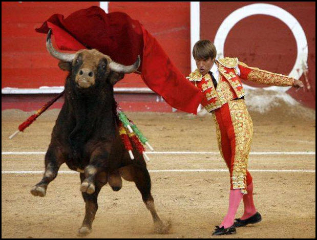 bull fighting pic