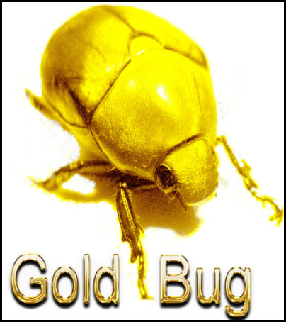 Gold Bugs-Don't take your eyes on this critical price zone!
