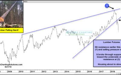 Lumber prices fall 45% this year, sending macro message?